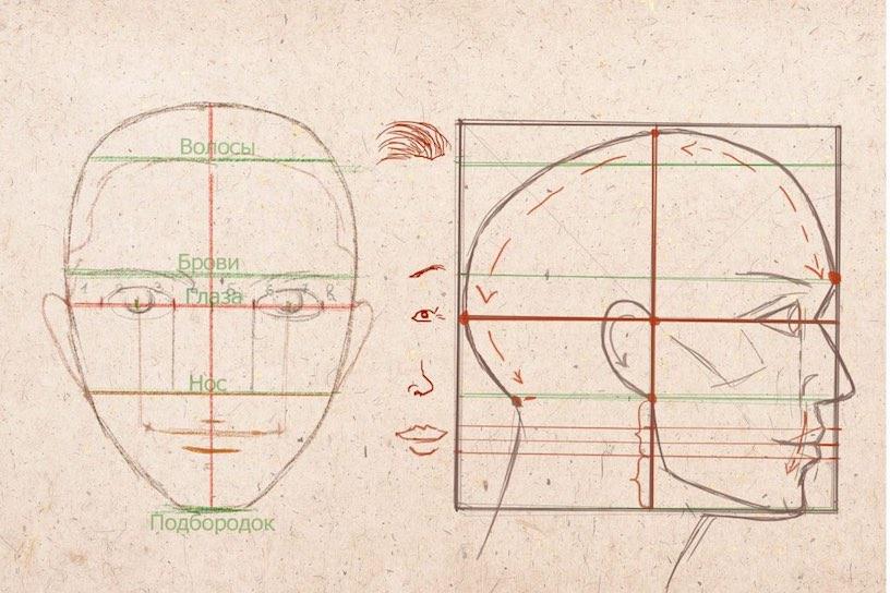 как научиться рисовать лицо